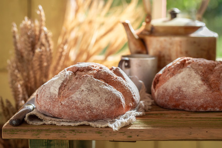 Fresh loaf of bread with grain and ears in summer Stock Photo