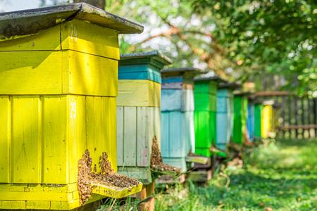 Alte hölzerne Bienenstöcke im Garten im Sommer, Polen Standard-Bild