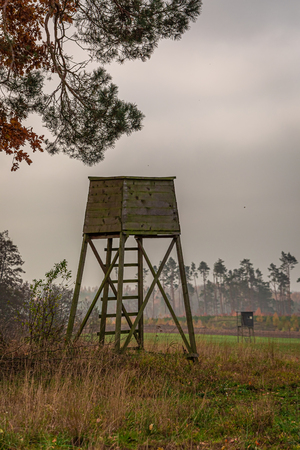 Cold autumn forest and shooting tower, Poland Stock Photo