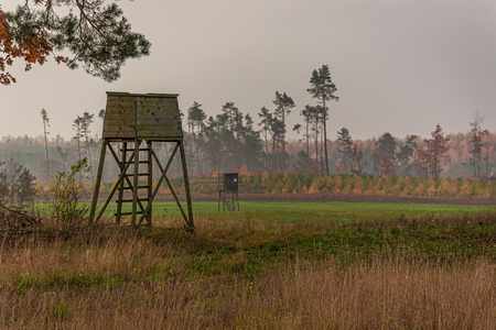 Shooting tower and forest in the autumn