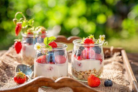 Tasty granola with berries and yogurt in garden