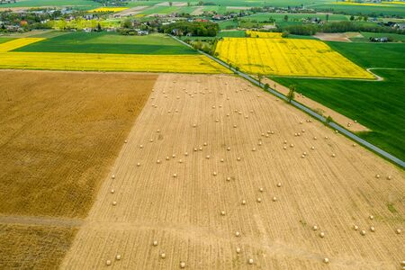Field with hay sheaves from above, Poland