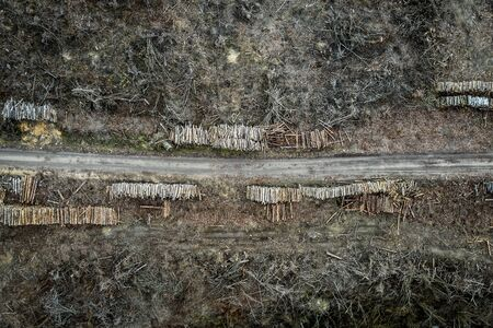 Terrible deforestation, destroyed forest for harvesting, aerial view
