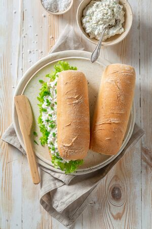 Spring sandwich with lettuce, creamy cheese and chive