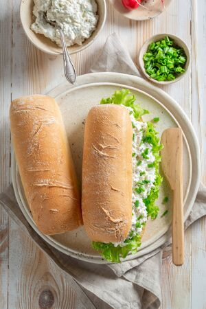 Fresh sandwich with lettuce, creamy cheese and chive