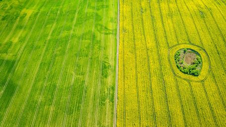 Yellow and green spring rape fields, aerial view of Poland Reklamní fotografie