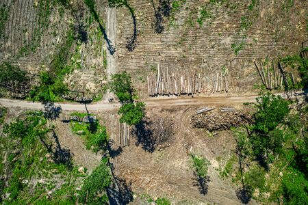 Deforestation as environmental destruction, aerial view of Poland