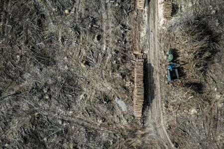 View from above terrible deforestation. harvesting a forest, Europe