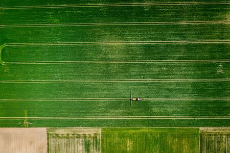 Big green field with tractor trails, aerial view of Poland