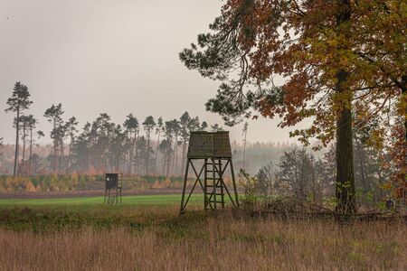 Shooting tower and forest in the foggy autumn