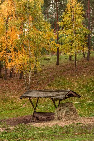 Deer feeder in the autumn full of colored forest