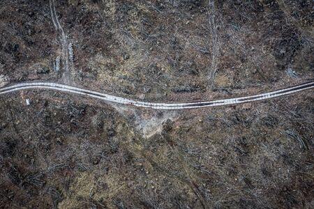 Horrible deforestation. harvesting a forest, Poland from above Stock fotó - 129013428