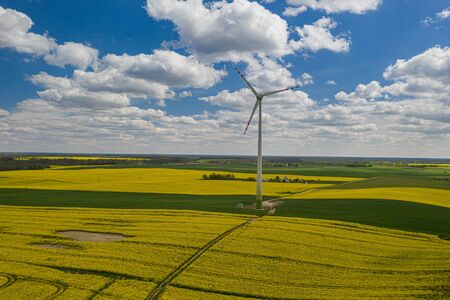 Flying above yellow rape fields and wind turbine, Poland Reklamní fotografie