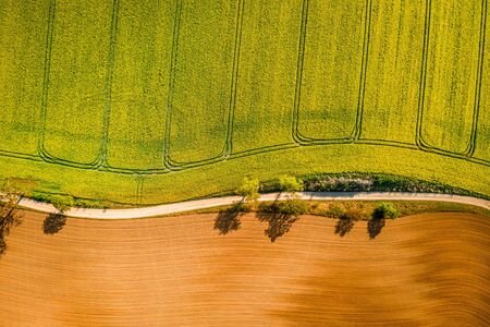 Yellow rape fields in the countryside, Poland from above Standard-Bild - 129013441