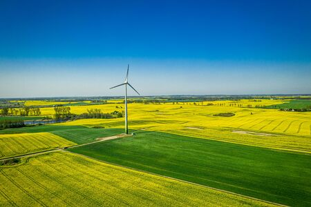 Green rape fields and wind turbine, Poland from above