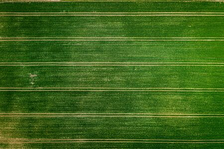 Small tractor spraying the pesticides on field, Poland from above