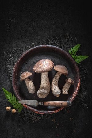 Various wild mushrooms on old clay plate
