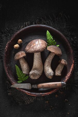 Noble and fresh wild mushrooms collected in the autumn 版權商用圖片