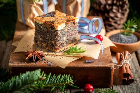 Homemade poppy seed cake for Christmas packed in take away