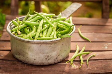 Healthy and fresh green beans in an old aluminum pot Reklamní fotografie - 130115927