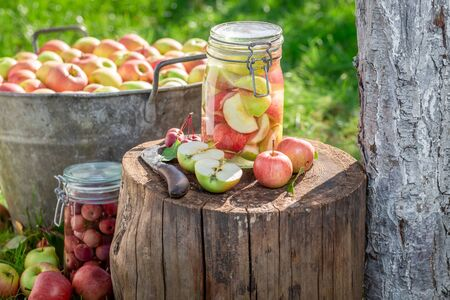 Preparation for homemade apples compote in the green garden Stock fotó