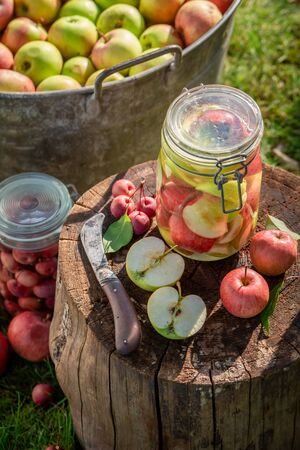 Homemade and sweet canned apples in the jar in garden Imagens