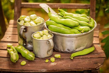 Closeup of green broad beans on old wooden chair Reklamní fotografie - 130115974