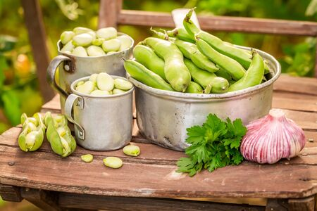 Closeup of broad beans with garlic on old wooden chair Reklamní fotografie - 130115976