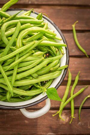 Top view of fresh green beans in summer greenhouse Reklamní fotografie - 130115992
