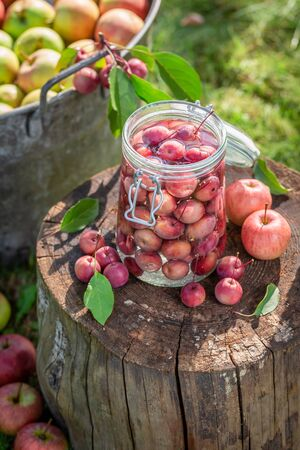 Preparation for apples compote in the jar in green garden