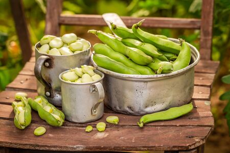 Healthy broad beans on old wooden chair Banco de Imagens
