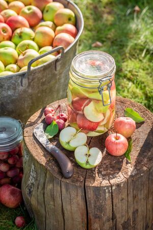 Closeup of homemade canned apples in garden