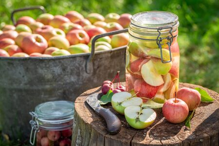 Preparation for canned apples in the summer green garden
