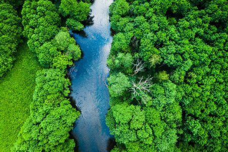 Aerial view of forest and river in Tuchola national park