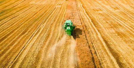 Flying above green harvester harvesting seed in summer Stock Photo - 130453970