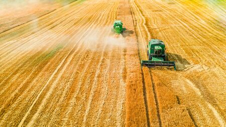 Two harvesters harvesting seed on field, aerial view Foto de archivo - 130453977