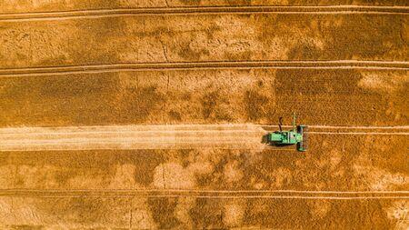 Flying above small combine harvesting on big field, Poland Foto de archivo - 130454009
