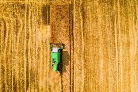 Flying above big harvester harvesting seed in summer