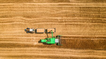 Combine drop the grain onto the tractor trailer, aerial view