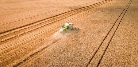 Green combine harvesting field in Poland, aerial view Imagens