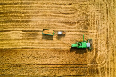 Big combine harvesting field in Poland, aerial view Imagens