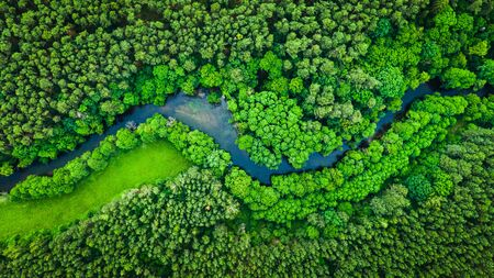 River and green forest in Tuchola natural park, aerial view Reklamní fotografie