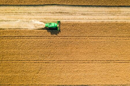 Flying above small harvester working on big field Archivio Fotografico