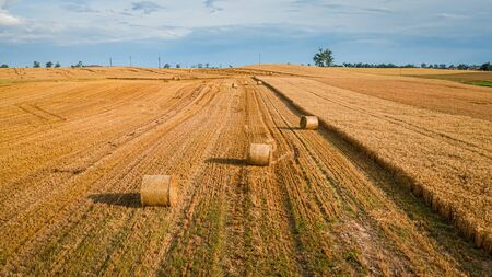 Big baler on mown  fields in summer, Poland