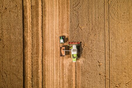 Flying above big harvester harvesting seed in Poland Stock Photo - 130454136