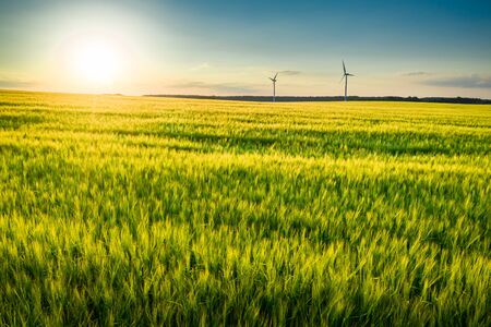 Field wheat and wind turbines at sunset, aerial view Reklamní fotografie