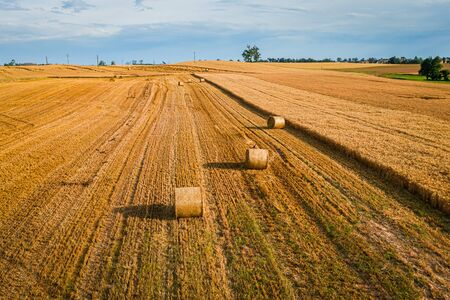 Round baler on yellow fields in summer, Poland 写真素材