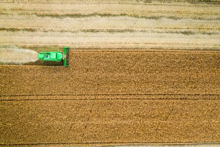 Harvester working on field in summer, aerial view