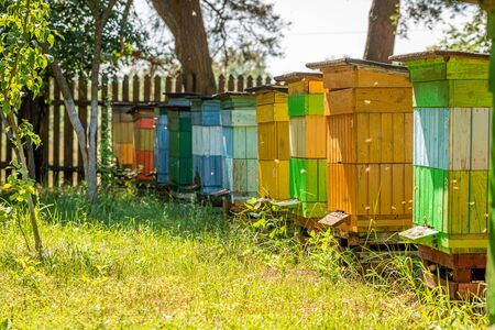 Old apiary in summer sunny day, Europe Banque d'images - 132072750