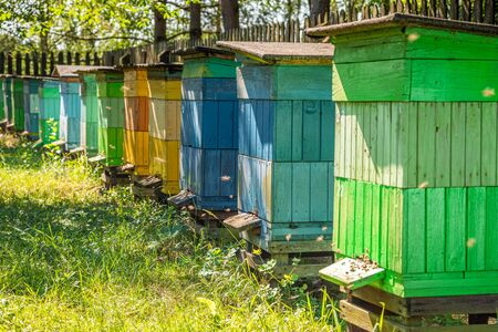 Handmade apiary full of bees in summer garden Banque d'images - 132234590